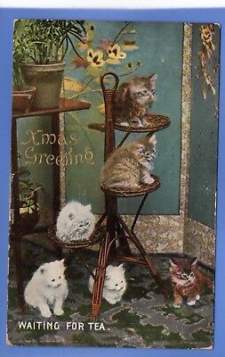 Old 1908 Wildt & Kray Postcard Christmas Xmas Noel Cats Kittens Waiting For Tea