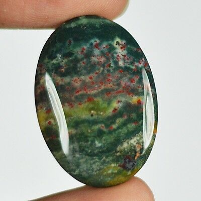 31ct Natural Best Grade Blood Stone Oval Cabochon from Africa AR69