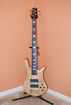 2006 Spector Euro 5 LX Spalted Maple