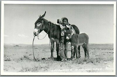 "Man & Burro's - ""Companions"" in Navajo Land - Frasher's RPPC Real Photo Postcard"