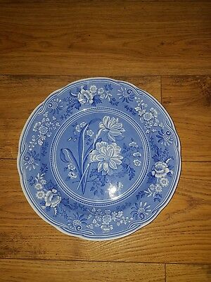 Spode Blue Room Botanical plate collectors
