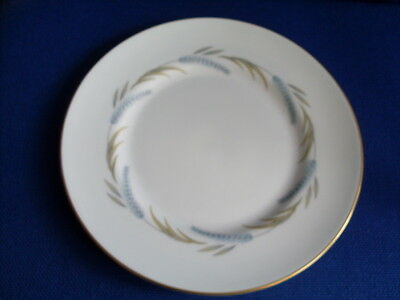 """Royal Worcester Harvest Ring 9"""" Diameter Dinner Plate - Good Used Condition"""