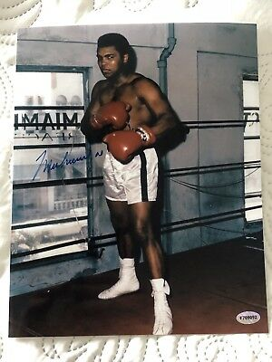Muhammed Ali Autographed 8x10 Photo ........Certified