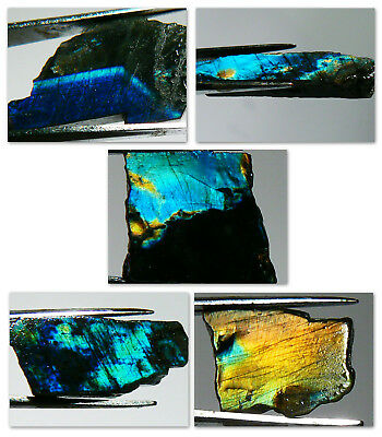 5 SPECTACULAR SPECTROLITE SLABS FROM FINLAND, 50.7 cts TOTAL