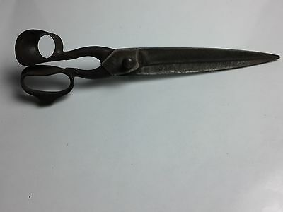 Antique Large Taylors Shears/sissors 14 Inch From Belgium