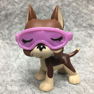 Littlest Pet Shop LPS Toy Chocolate Brown Great Dane Dog #817 +Purple Glasses