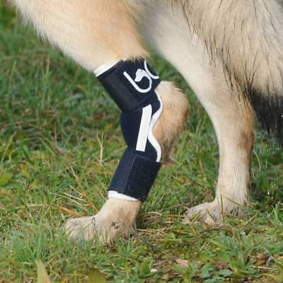 Balto Dog Hock Brace: True Support- ALUMINIUM INSERTS