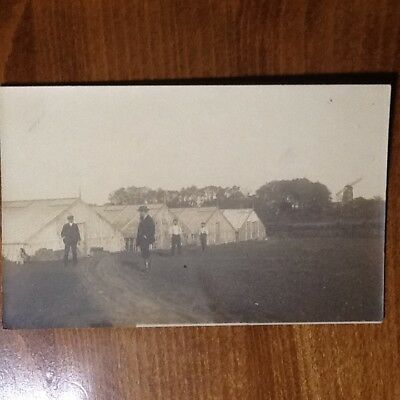Le Serre Di Henry Willem - Windmill, Old Postcard/photo