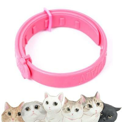 5Pcs Adjustable Pet Cat Dog Collar Protect Neck Ring Flea Tick Mite Louse Remedy