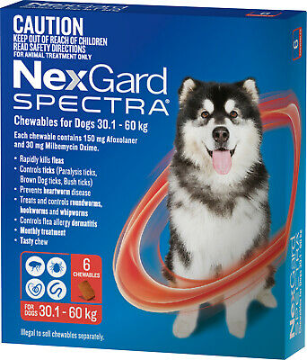 Nexguard Spectra Red for Extra Large Dogs 30.1-60kg 6 Pack - Nexguard Spectrum