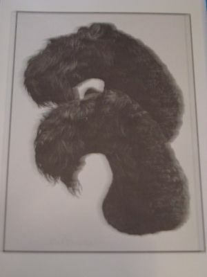 Kerry Blue Terrier Note Cards by Chris Lewis Brown - Pk of 4 cards