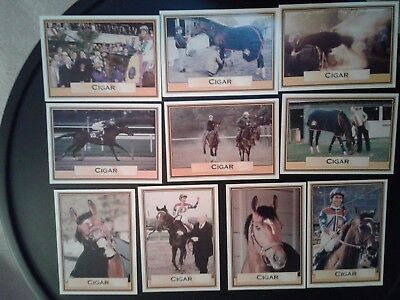 CIGAR - HORSE OF THE YEAR - FAMOUS THOROUGHBRED RACE HORSE COLLECTOR CARD cfv44