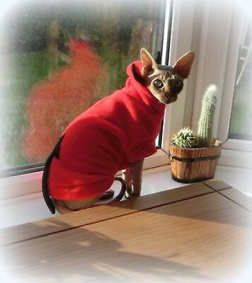 kitten DEVIL for a Sphynx cat, cat jumper, warm  Sphynx cat clothes, HALLOWEEN