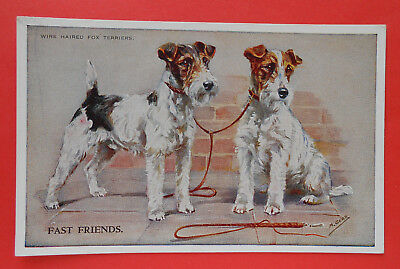 7518) Fast Friends. Wire Haired Fox Terriers