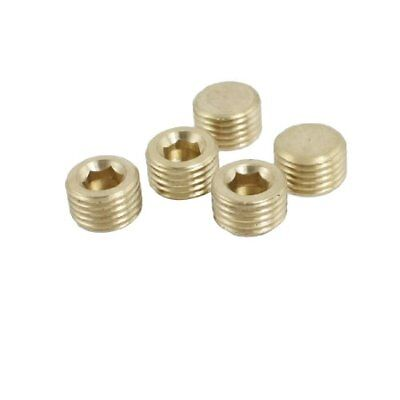 Brass 1 4  PT Male Threaded Dia Hex Socket Head Pipe Plug Fitting 5 Pieces