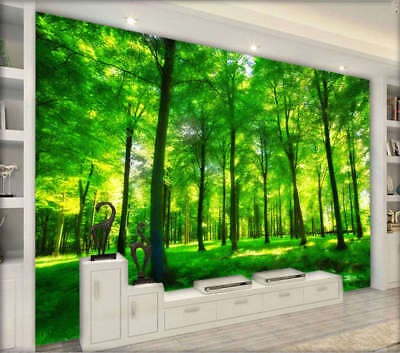 Rural Quiet Forest 3D Full Wall Mural Photo Wallpaper Printing Home Kids Decor