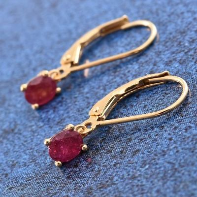 African Ruby (Ovl) Lever Back Earrings in  Sterling Silver 1.000 cts.