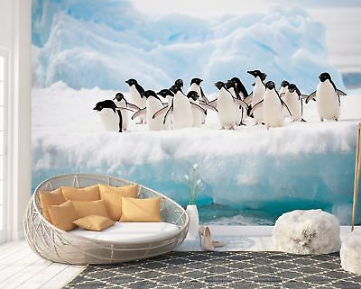 Wall Mural Photo Wallpaper Picture EASY-INSTALL Fleece Penguins Animals Poster