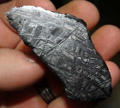 Amazing 186 Gm. Muonionalusta Etched Meteorite End Cut