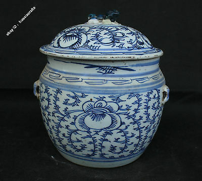 21cm Chinese Blue And White Old Porcelain Handmade Lion Pot Jar Tank Jug Can