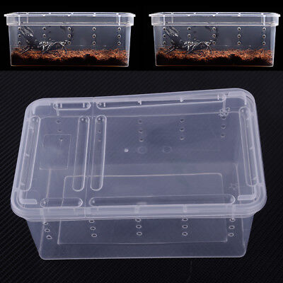 Transparent Clear Plastic Box Insect Reptile Cage Breeding Live Food Feeding Box