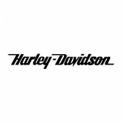 Harley - Davidson Logo Vinyl Cut Sticker Decal Laptop Car Van Motorbike Bottle