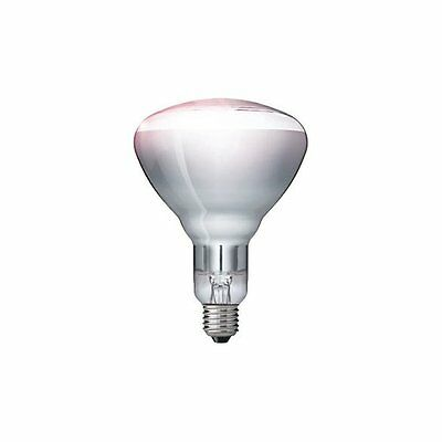 Philips Infrared Lamp Industrial Heat - Clear, BR125, E27 - 250W - Gastronomy