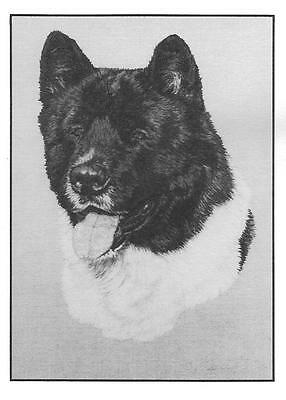 Akita Note Cards by Chris Lewis Brown - Pk of 6 cards