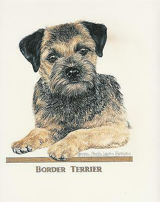 Border Terrier Blue Original Art by Chris Lewis Brown - #535