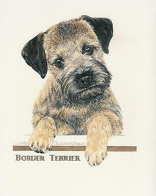 Border Terrier Grizzle Puppy Original Art by Chris Lewis Brown - #534
