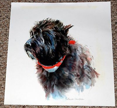 Cairn Terrier Watercolor Dog Painting Print Poster Art by Patricia Vaughan 15x16
