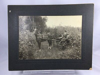 1907 Antique Photographs Black and White Horse Carriage Man Albert Burwood