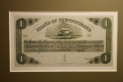 1850 ISLAND OF NEWFOUNDLAND 1 POUND BANKNOTE - NEW REPRODUCTION lot 2