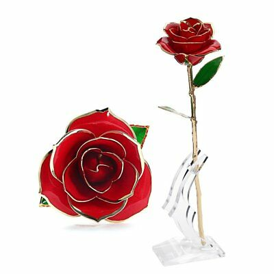 24K Gold Dipped Rose Flower With Stand Real Long Stem Birthday Christmas Gift
