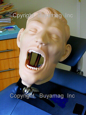 Dental Teeth Extraction Manikin Typodont Сhair Mount Mask Brand New 11 Available