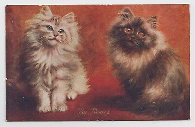 "POSTCARD - artist drawn, two pretty fluffy cats kittens ""The Rivals"""