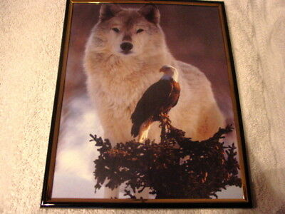 WOLF AND EAGLE 8X10 FRAMED PICTURE ( poster )