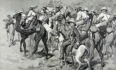 Camel & Donkey Cavalry, British Troops, Huge Double-folio 1880s Antique Print