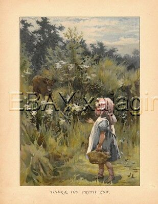 COW Calf & Little Girl in Field, Quality Antique Color Chromolith Print