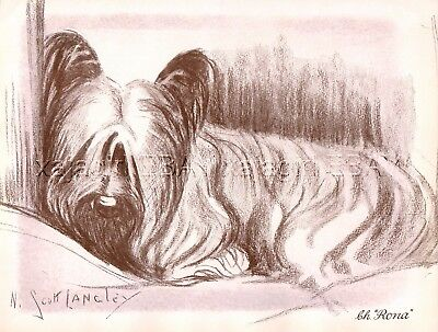 DOG Skye Terrier Named Champion, Beautiful 1930s Art Print by Nina Scott-Langley