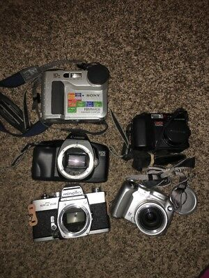 Canon Minolta Sony Olympus Camera Lot