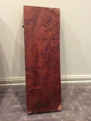 Red Gum Billet, Wild Fiddleback Figure , Timber, Slab