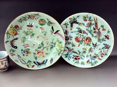 V-Beautiful Pair Chinese 19thC Famille Rose Plates Oriental Porcelain Antiques