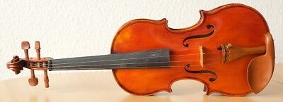 "Very old labelled Vintage violin ""Evasio Emilio Guerra"" fiddle 小提琴 ヴァイオリン Geige"