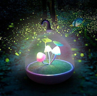 Calming Autism Sensory Night Lights Kids Dimmable LED Sensor Touch Lamp Children