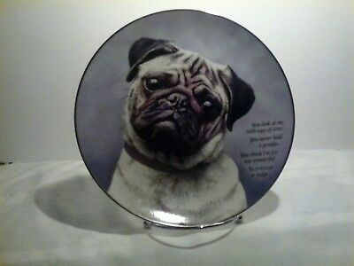 the danbury mint collection ' eyes of love limited-edition devoted pugs plate
