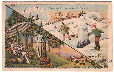 AK US USA Post Card Winter in the East / In California ungel. vor 1945