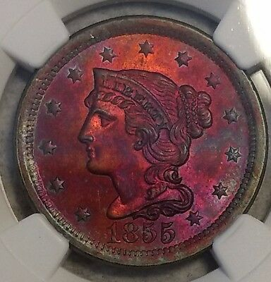 Choice Uncirculated 1855 Large Cent! Gorgeously toned specimen w/ vibrant color!