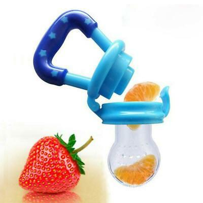 Nipple Fresh Fruit Pacifier Food Nibbler Feeder Feeding Safe Baby Bottles Kids