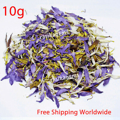 Dried blue lotus flowers nymphaea caerulea nuciferine herbal tea blue lotus flowers sacred lily nymphaea caerulea white lily herbal smoke tea 10g mightylinksfo